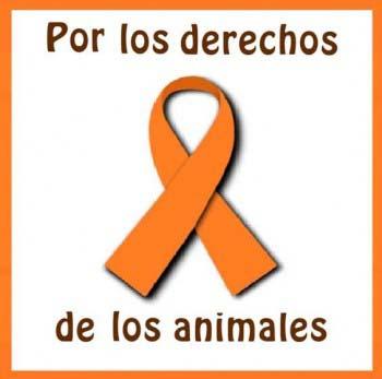 Por los derechos de los animalesobrázek 2235