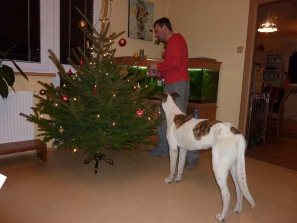 Vánoce 010
