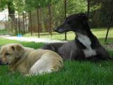 já a Beník-polední siesta