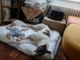 odpočinek ve dvou