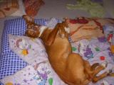 takhle spinkám v posteli