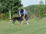 Příprava na hod její milovaného frisbee.