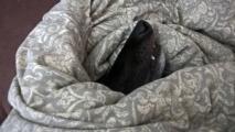 Prve skusenosti s postelou