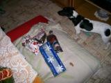 Vánoce 2010 004